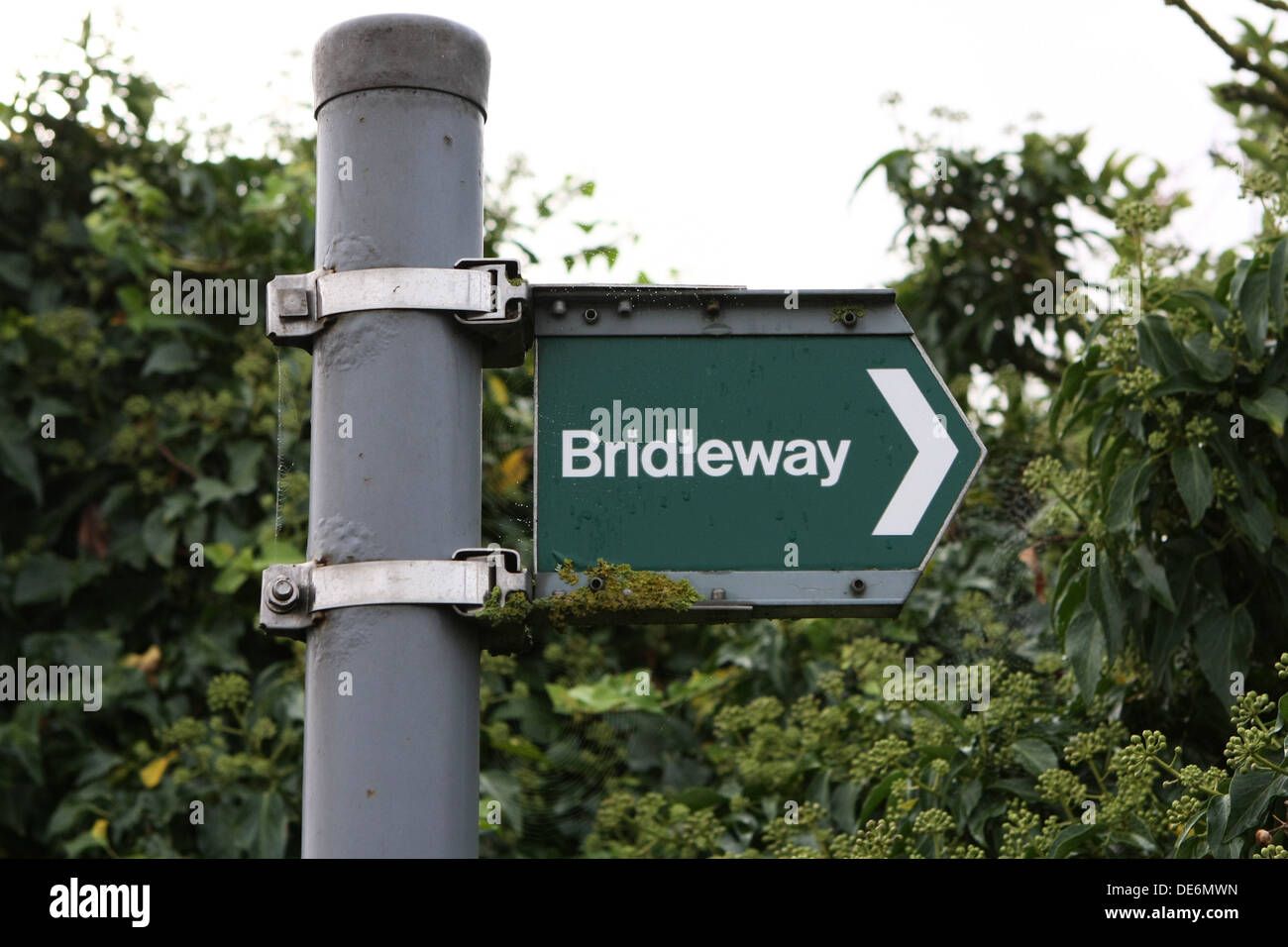 Standard British bridleway right of way sign - Stock Image