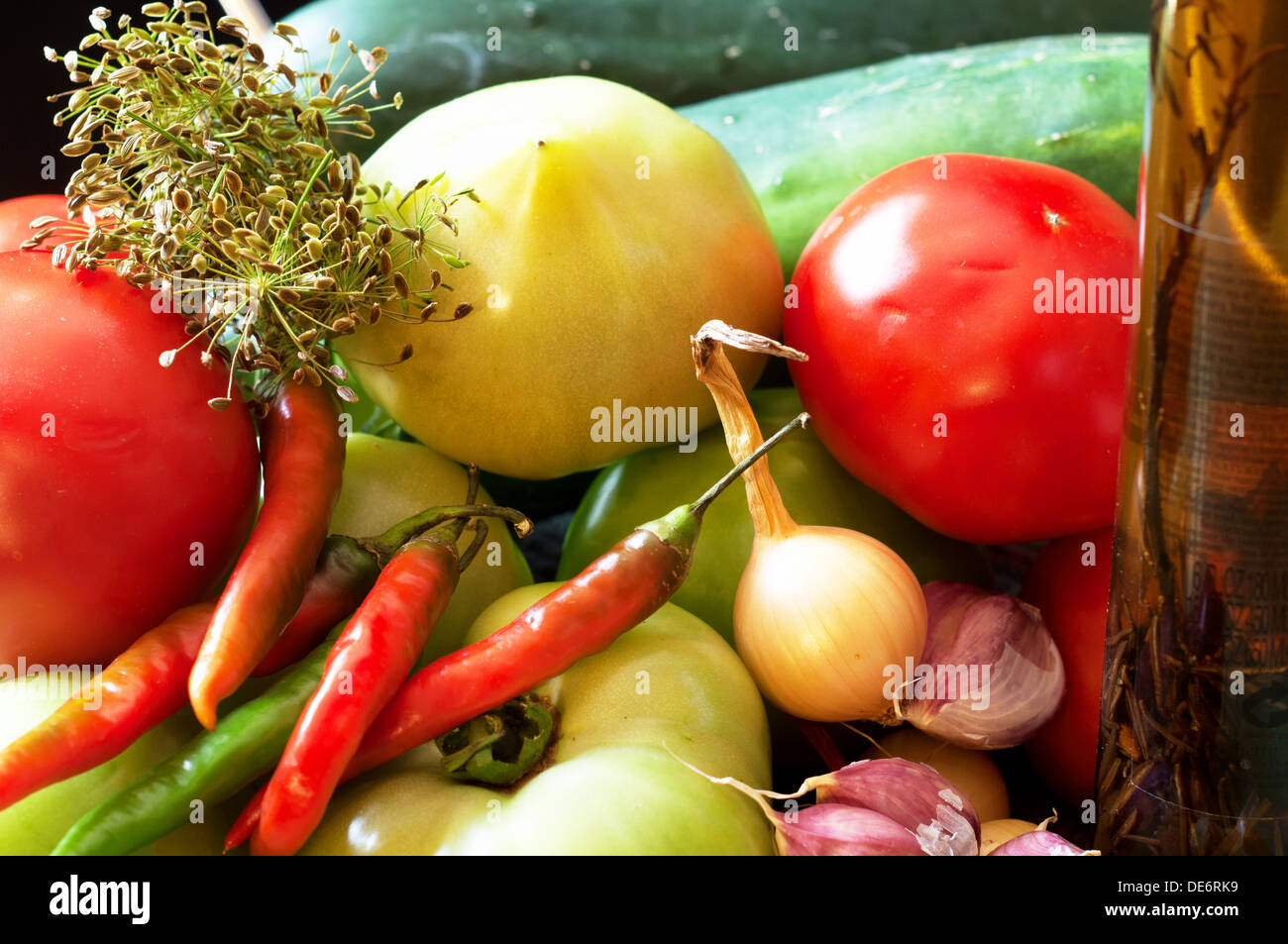 Ingredients for pickles including tomatoes (red and green) cucumbers, hot peppers, onions (red and white), garlic, and dill - Stock Image