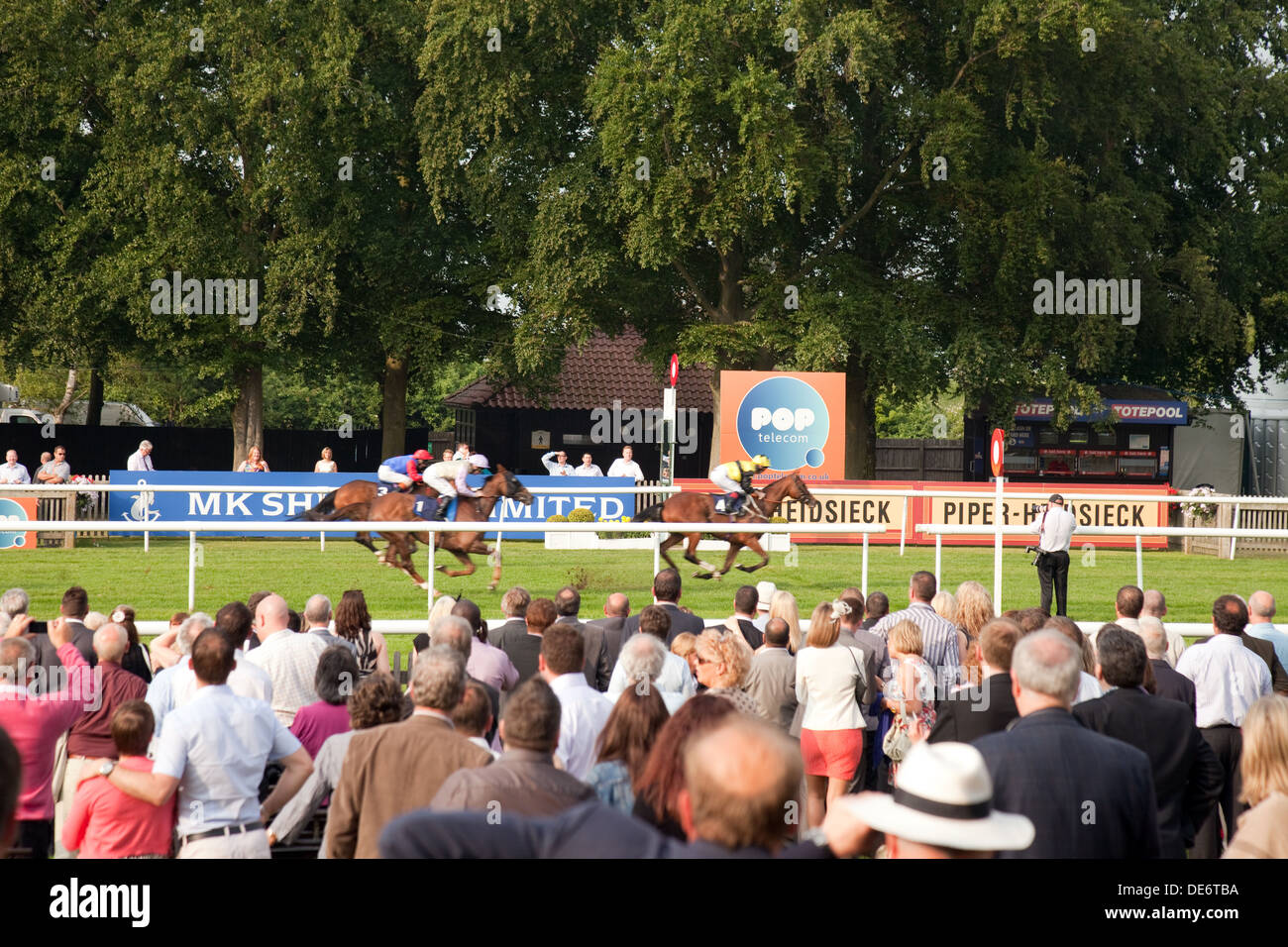 First past the winning post at Newmarket races, the July racecourse, Newmarket Suffolk UK - Stock Image