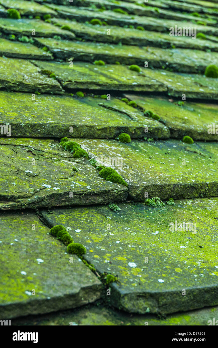 how to clean a slate roof of moss