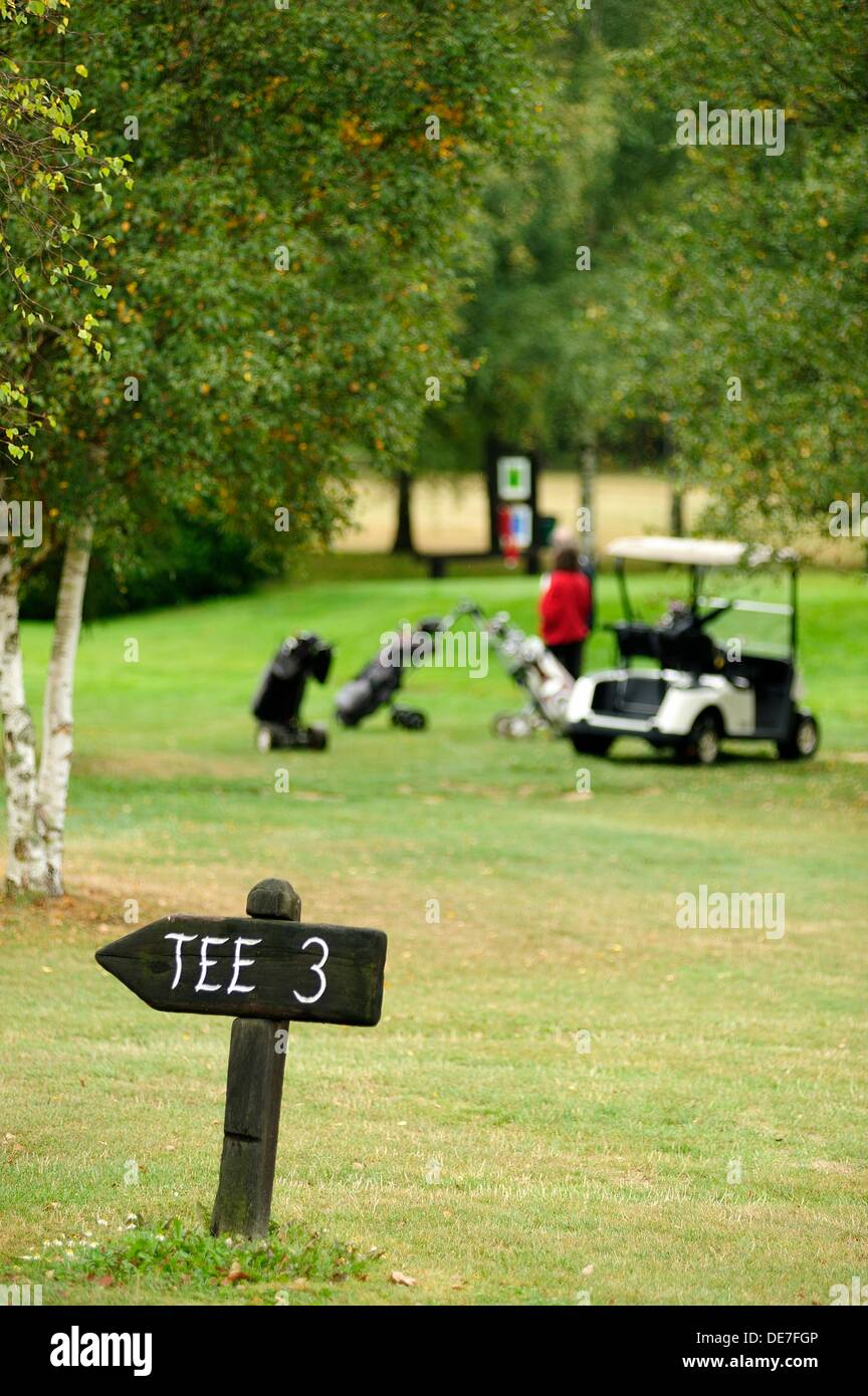 Photo tee three with buggy and golf cart at the bottom - Stock Image