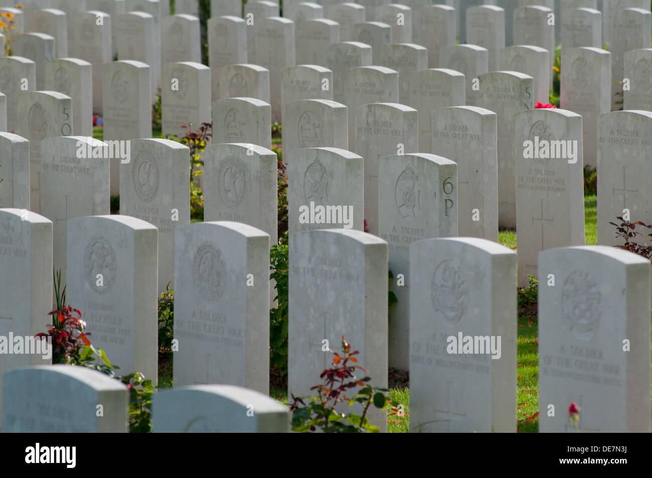 Mass of headstones, stone of remembrance in Delville Wood South African WW1 war cemetery, Somme, France - Stock Image