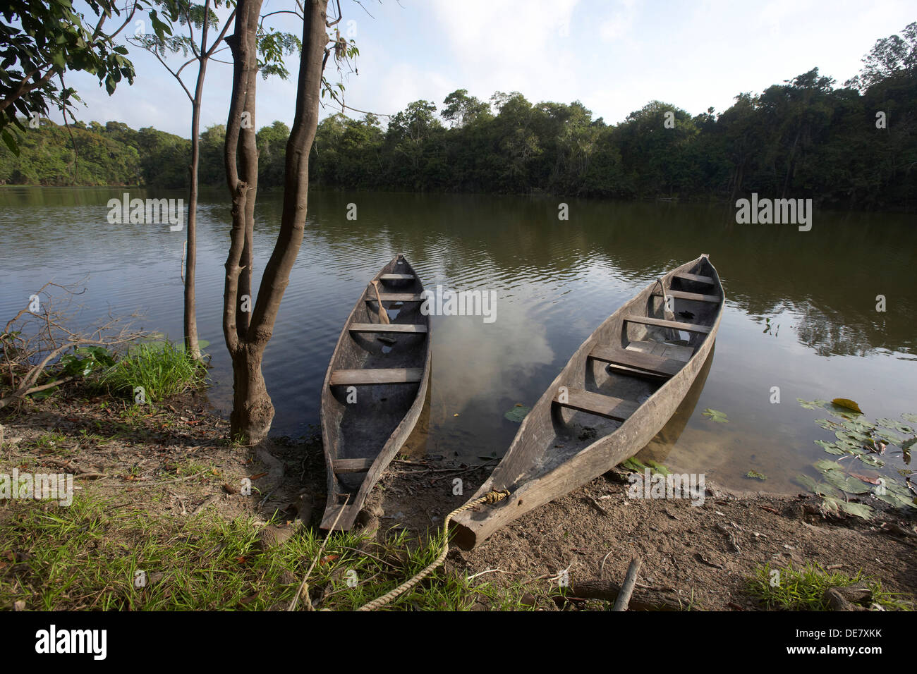 dug out canoes on an oxbow lake off the Rewa River, Rupununi, Guyana, South America - Stock Image