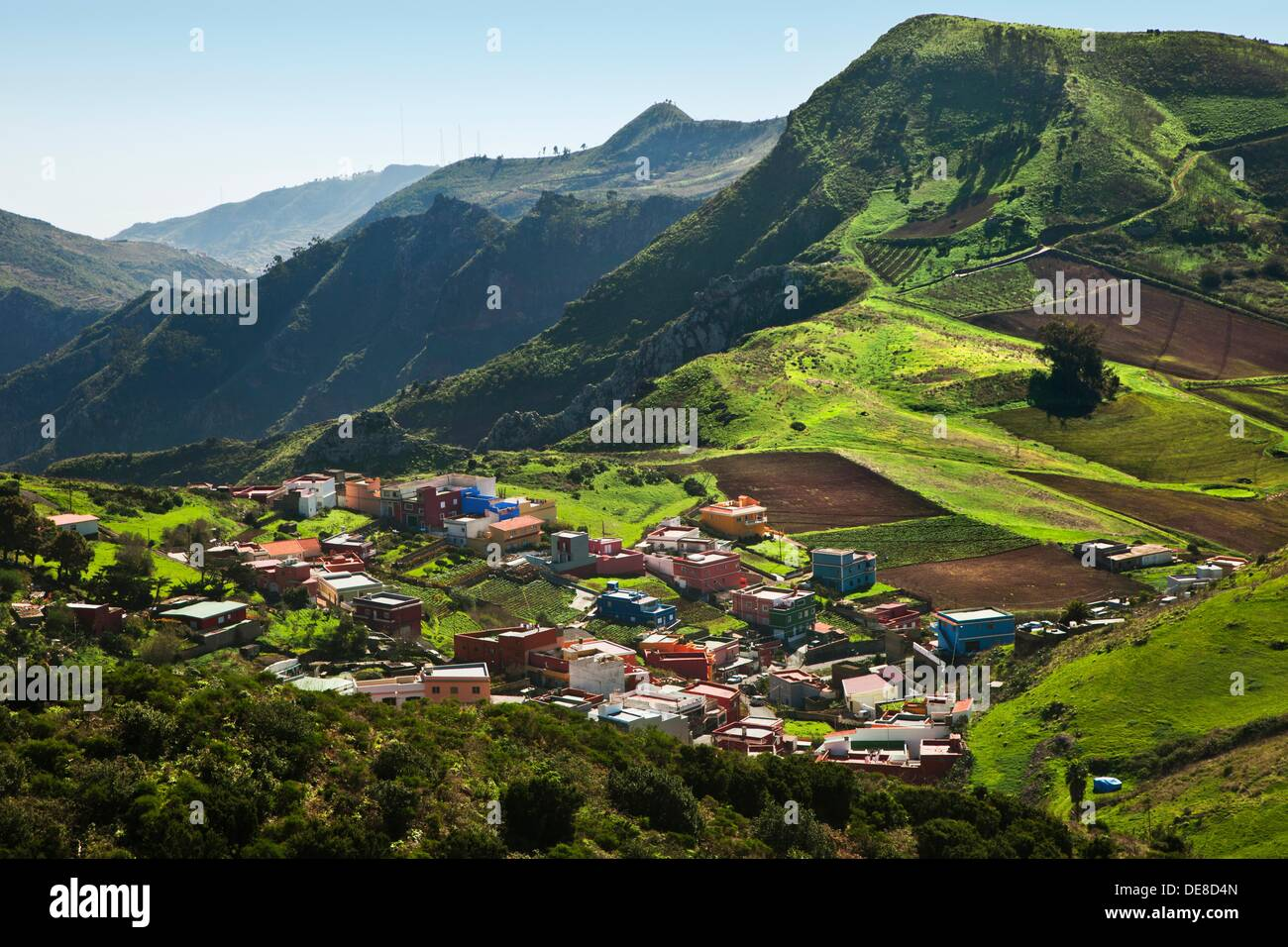 Las Mercedes Anaga Rural Park Tenerife Canary Islands Spain. - Stock Image