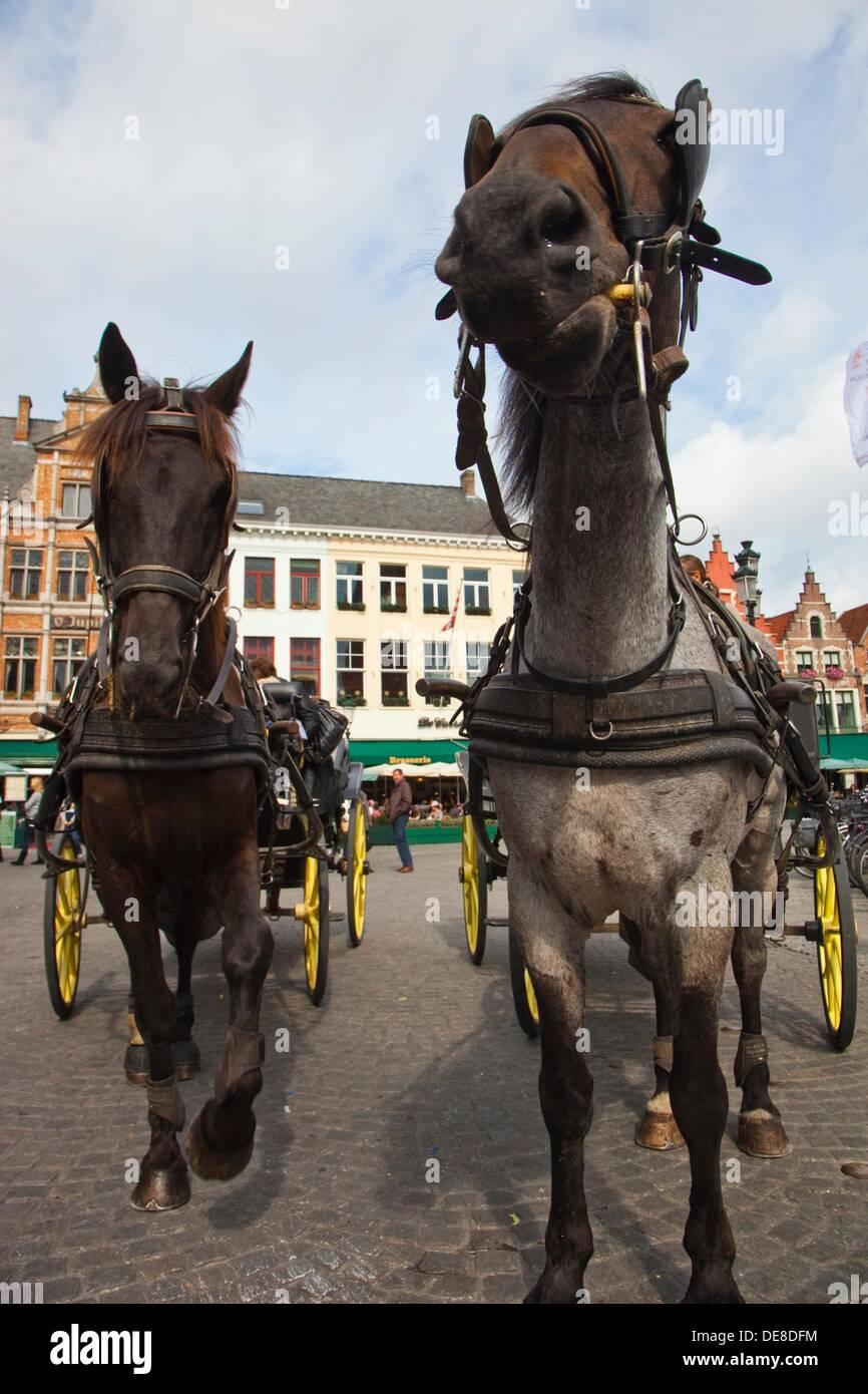 Carriage in Markt Square, Bruges, Brugge, Flanders,Belgium, UNESCO World Heritage Site. - Stock Image