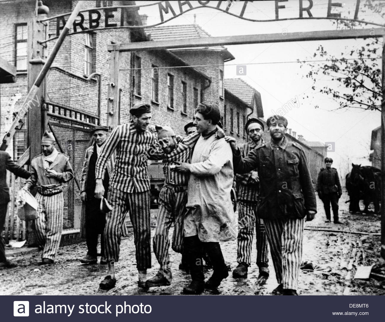 The Red Army liberated the concentration camp at Auschwitz. Artist: Anonymous - Stock Image
