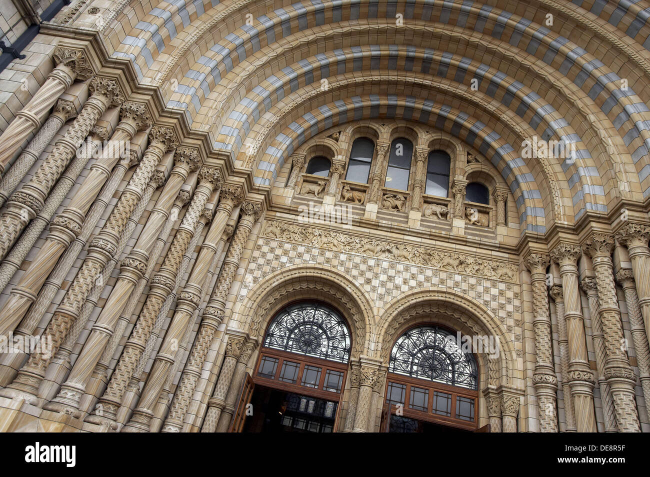 Natural History Museum, London. England, UK - Stock Image