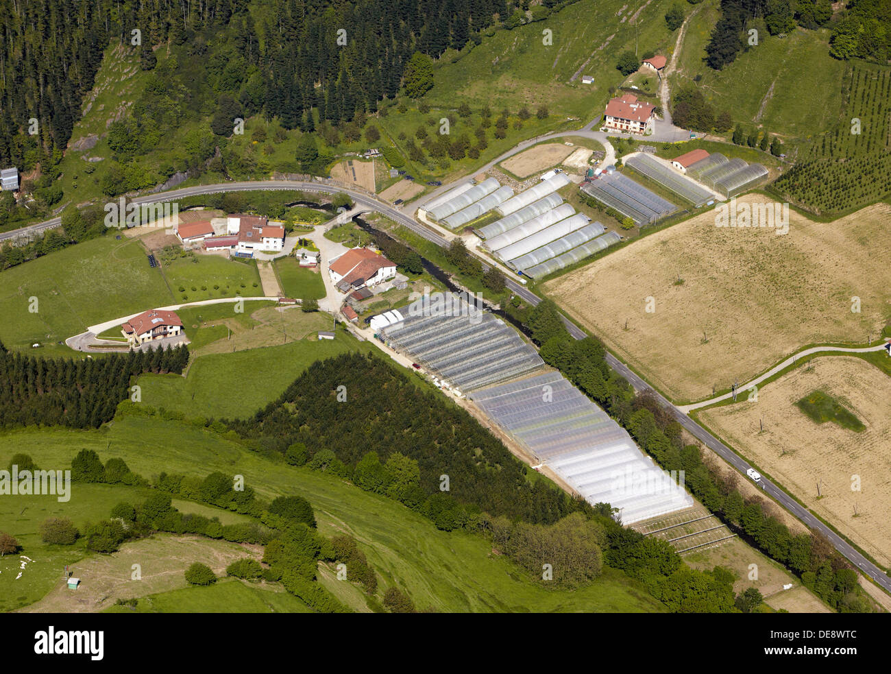 Greenhouses, Nuarbe, Azpeitia, Guipuzcoa, Basque Country, Spain - Stock Image
