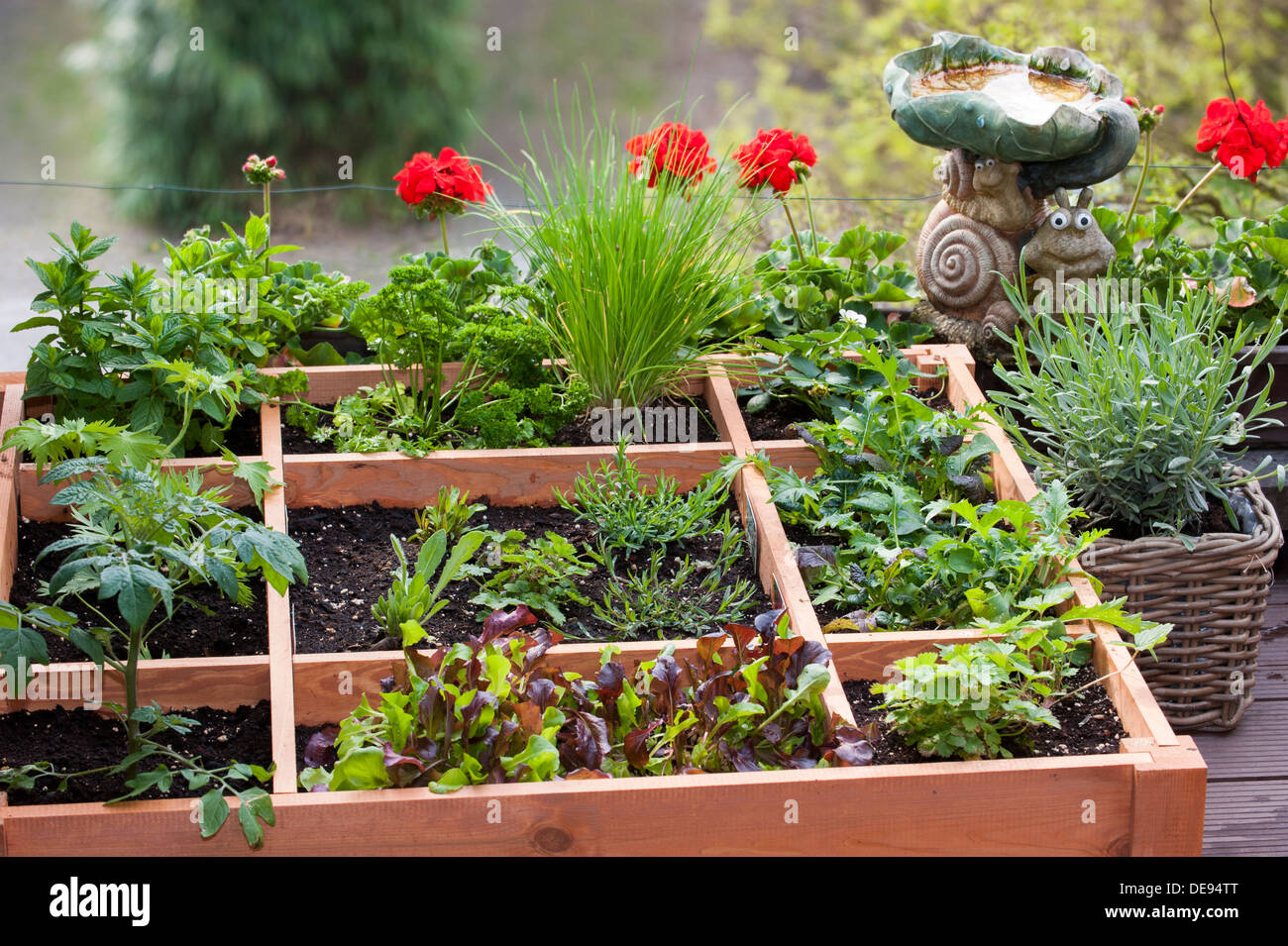 Square foot gardening by planting flowers herbs and vegetables in stock photo 60437688 alamy Flowers to plant in vegetable garden