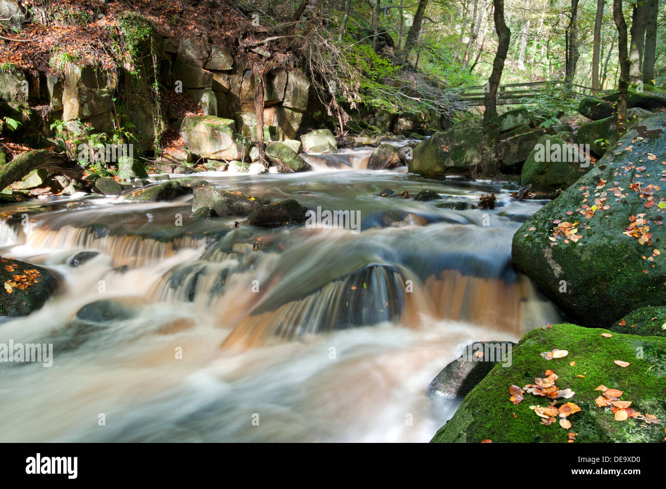Burbage Brook Flowing Through Padley Gorge, Longshaw Estate, Peak District National Park, Derbyshire, England, UK - Stock Image