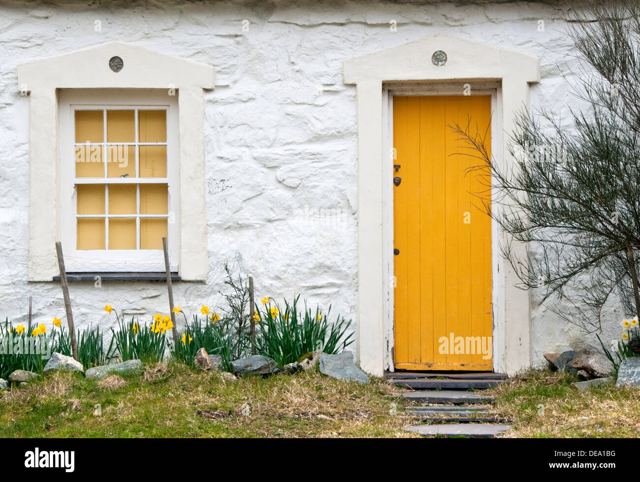 Detail of Welsh Cottage  with Yellow Door in Spring, Snowdonia National Park, North Wales, UK - Stock Image