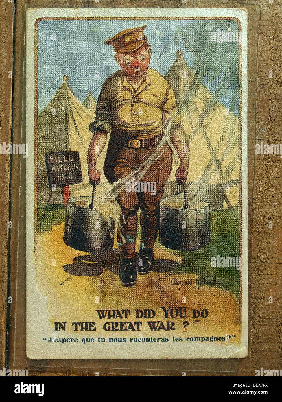 What did you do in the Great War card, Muse Somme 1916, 072 - Stock Image
