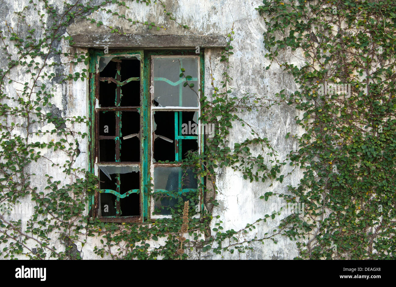 Broken window of an abandoned house in an abandoned village, Chek Keng, Hong Kong, Hong Kong, China, People's Republic of China - Stock Image