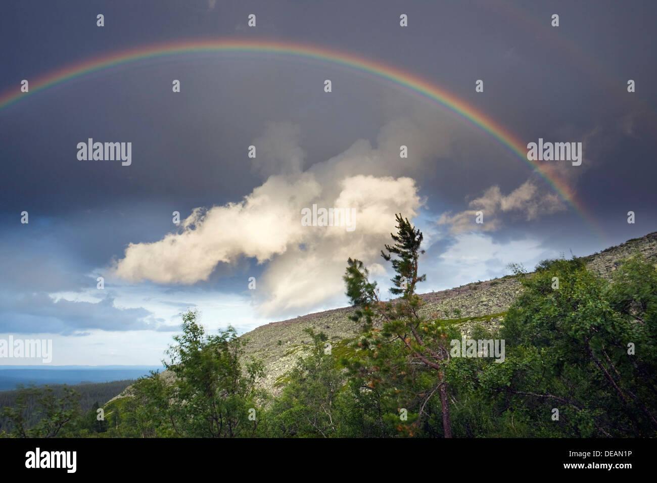 Rainbow, Fulufjaellet National Park, Dalarna county, Sweden, Scandinavia, Europe - Stock Image