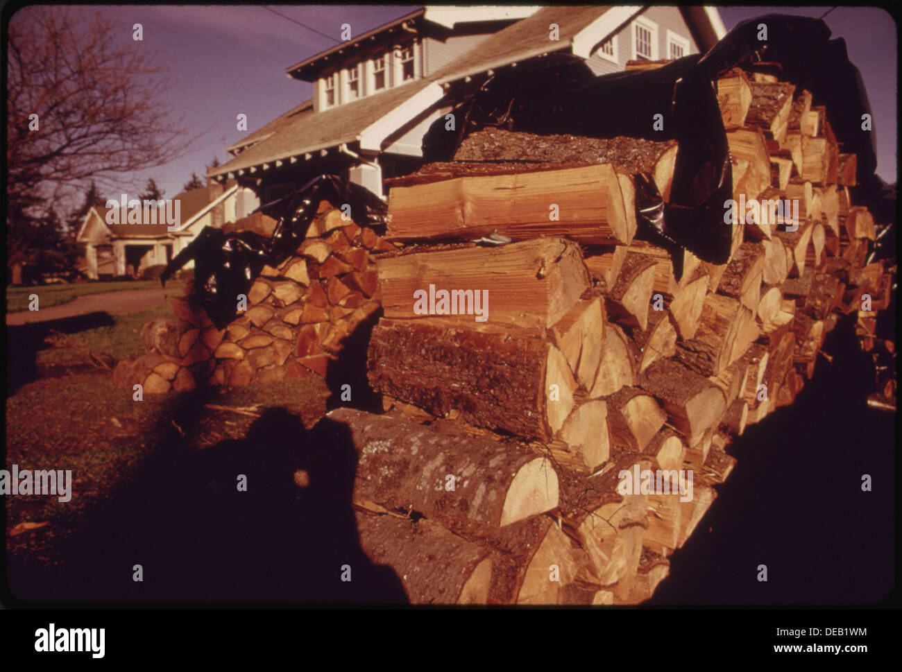 UNTIL THE FUEL CRISIS IT WAS VERY UNUSUAL TO NOTICE WOOD PILED ON FRONT LAWNS SUCH AS THIS STACK. PRICES FOR PRECUT 555454 - Stock Image