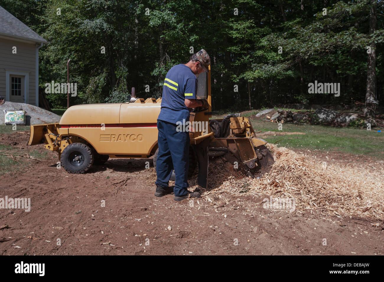 A man using a Rayco model Super RG50 4X4 Stump Grinder to remove a tree  stump
