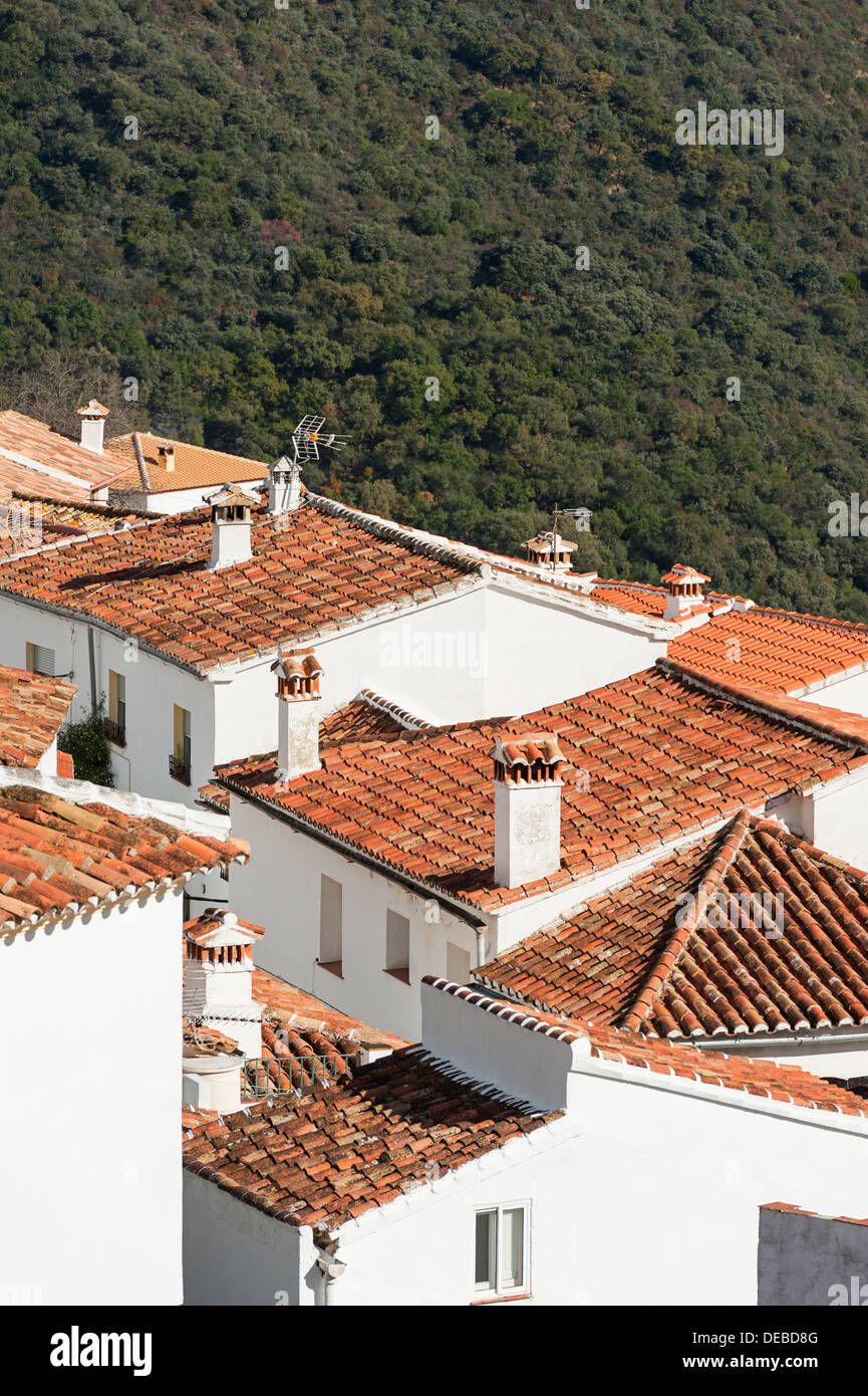 Rooftops in Andalusian village - Stock Image