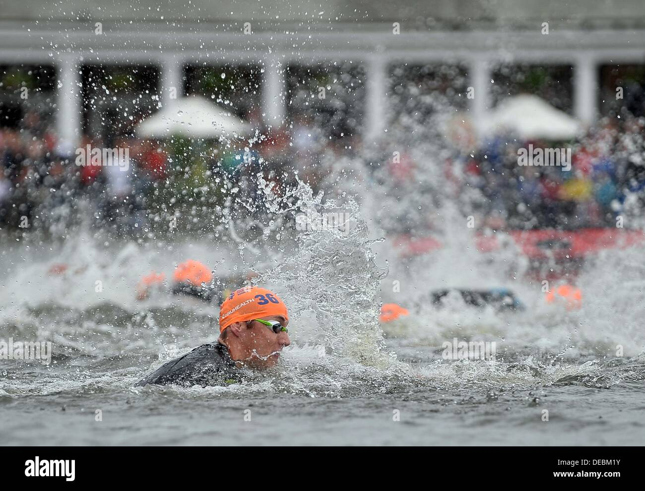 London, UK. 15th Sep, 2013. The competitors swim past the Serpentine cafe. Benjamin Shaw (ITU, 36). PruHealth World Triathlon Grand Final. Hyde Park. London. 15/09/2013. © Sport In Pictures/Alamy Live News - Stock Image