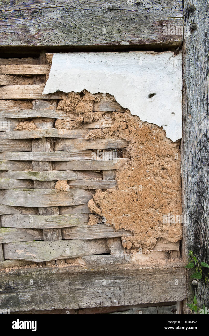 Original sixteenth-century wattle and daub on an old cottage in Herefordshire, UK. The wattle consists of split oak laths - Stock Image