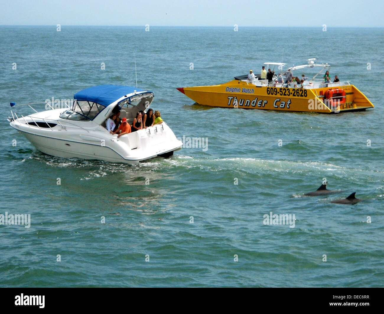 Two boats out dolphin watching in the ocean just south of Cape May, New Jersey - Stock Image