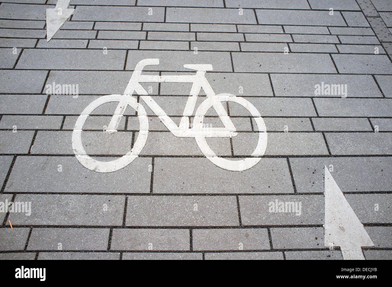 Dedicated cycle way - Stock Image