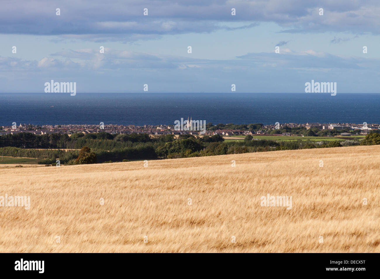 Buckie,Scotland with barley field in foreground - Stock Image
