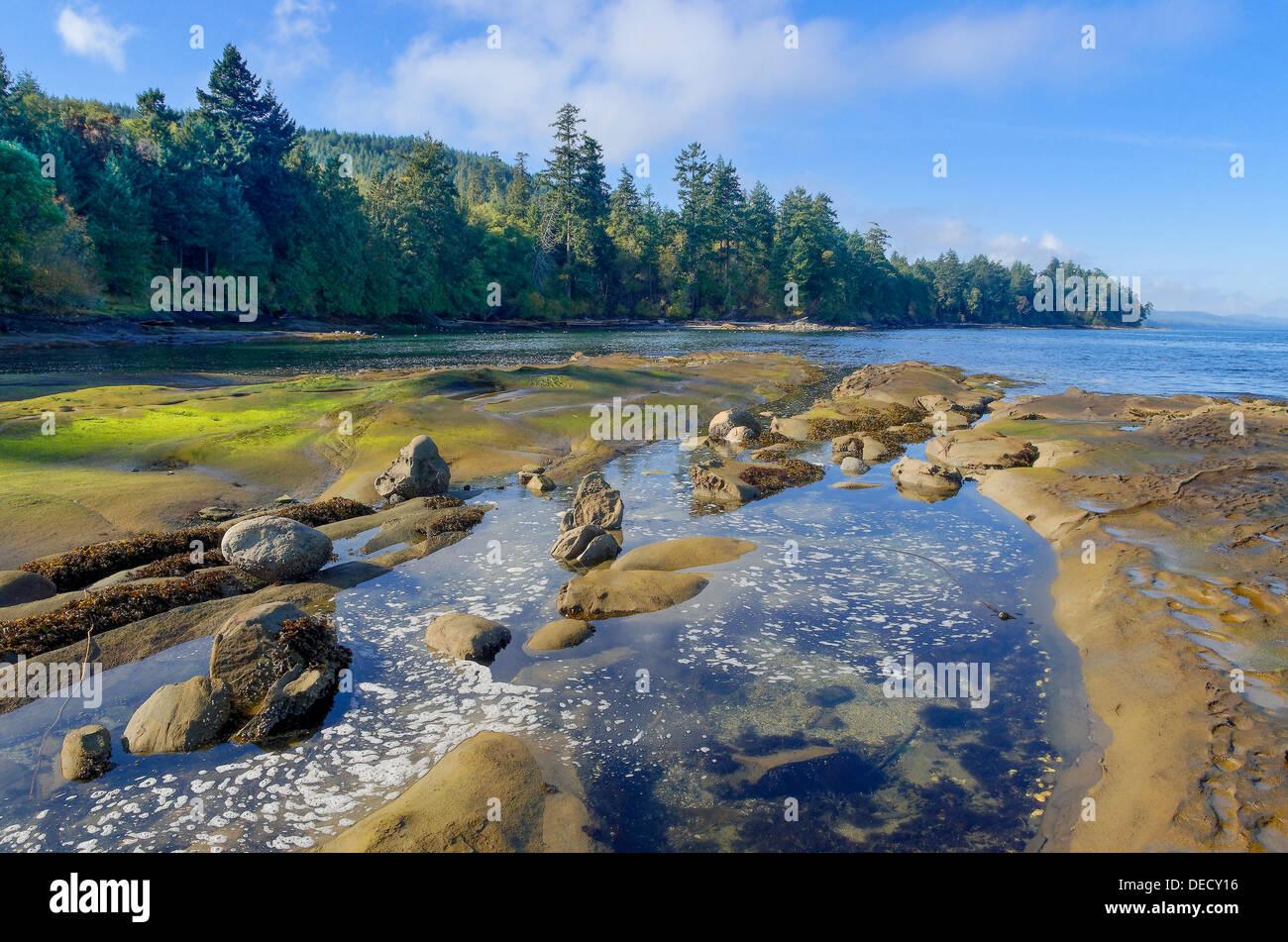 Rocks and tide pools, Cable Bay, Galiano Island, British Columbia, Canada - Stock Image