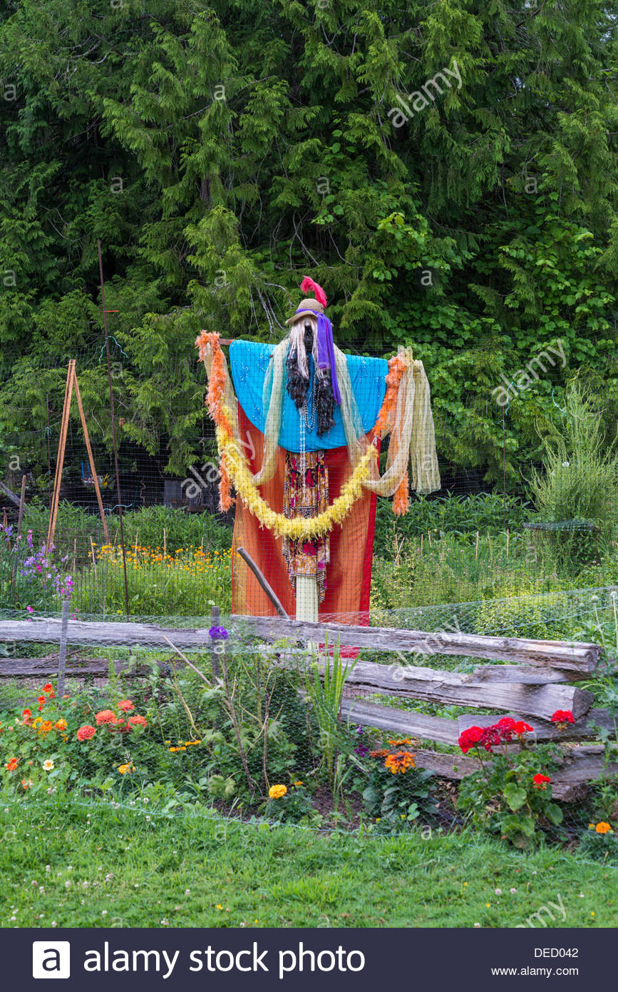 Garden Scarecrow, Saanich, Vancouver Island, British Columbia, Canada - Stock Image