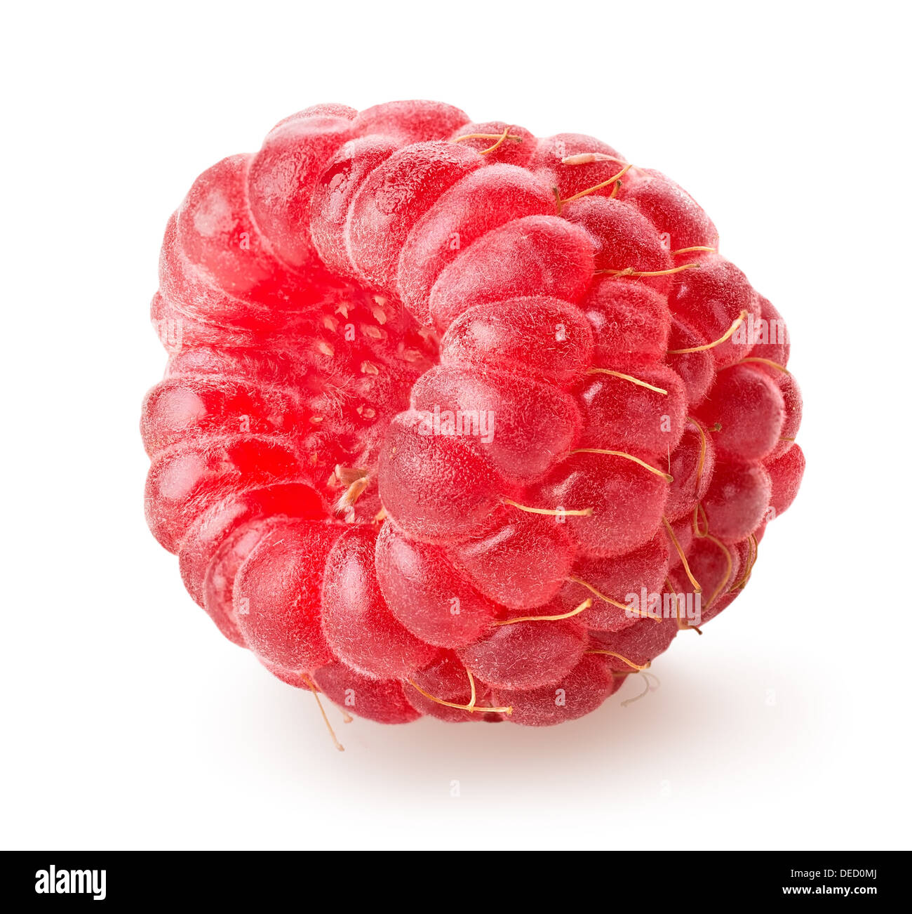 Juicy raspberry isolated on a white background - Stock Image