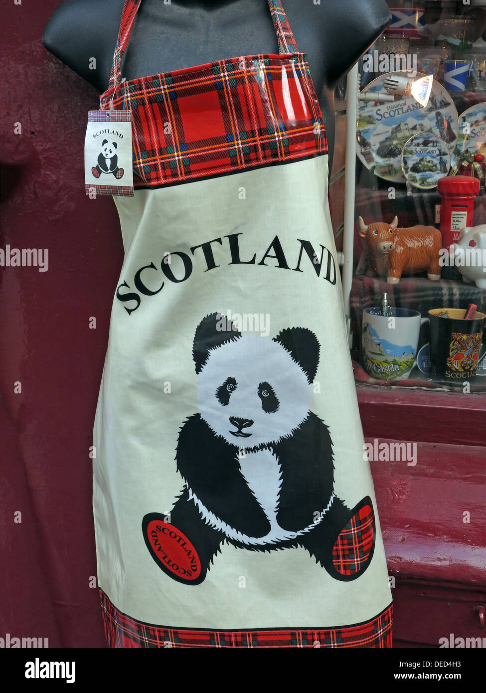 Panda gift Edinburgh Scotland PVC Kitchen Apron Souvenir - Stock Image