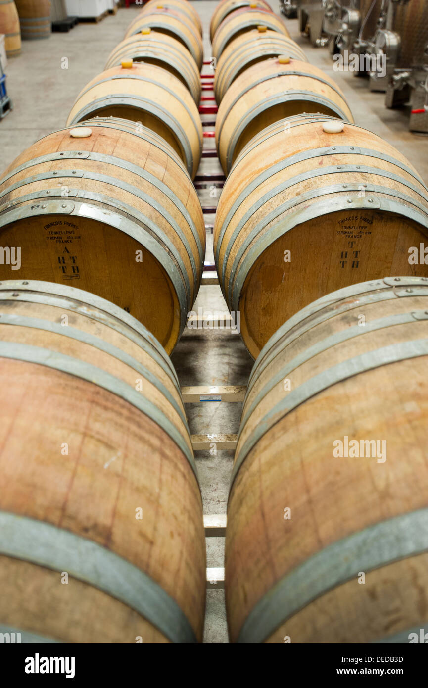 USA, New Jersey NJ Cape May Winery and vineyards on the Southern Jersey Shore barrels of wine fermenting Stock Photo