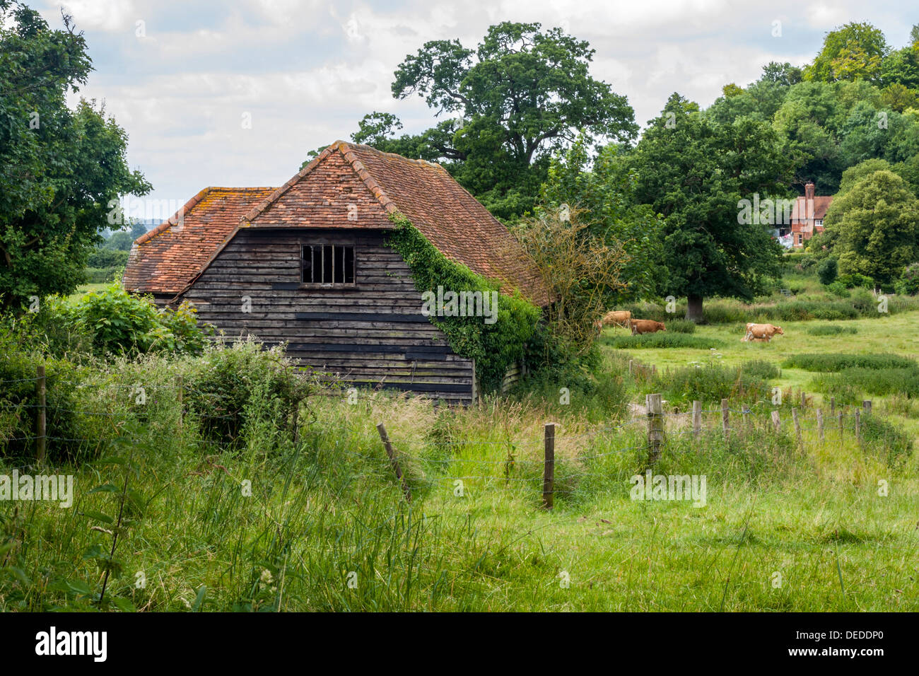 Barn on the edge of Hambleden, a Village in Buckinghamshire - Stock Image