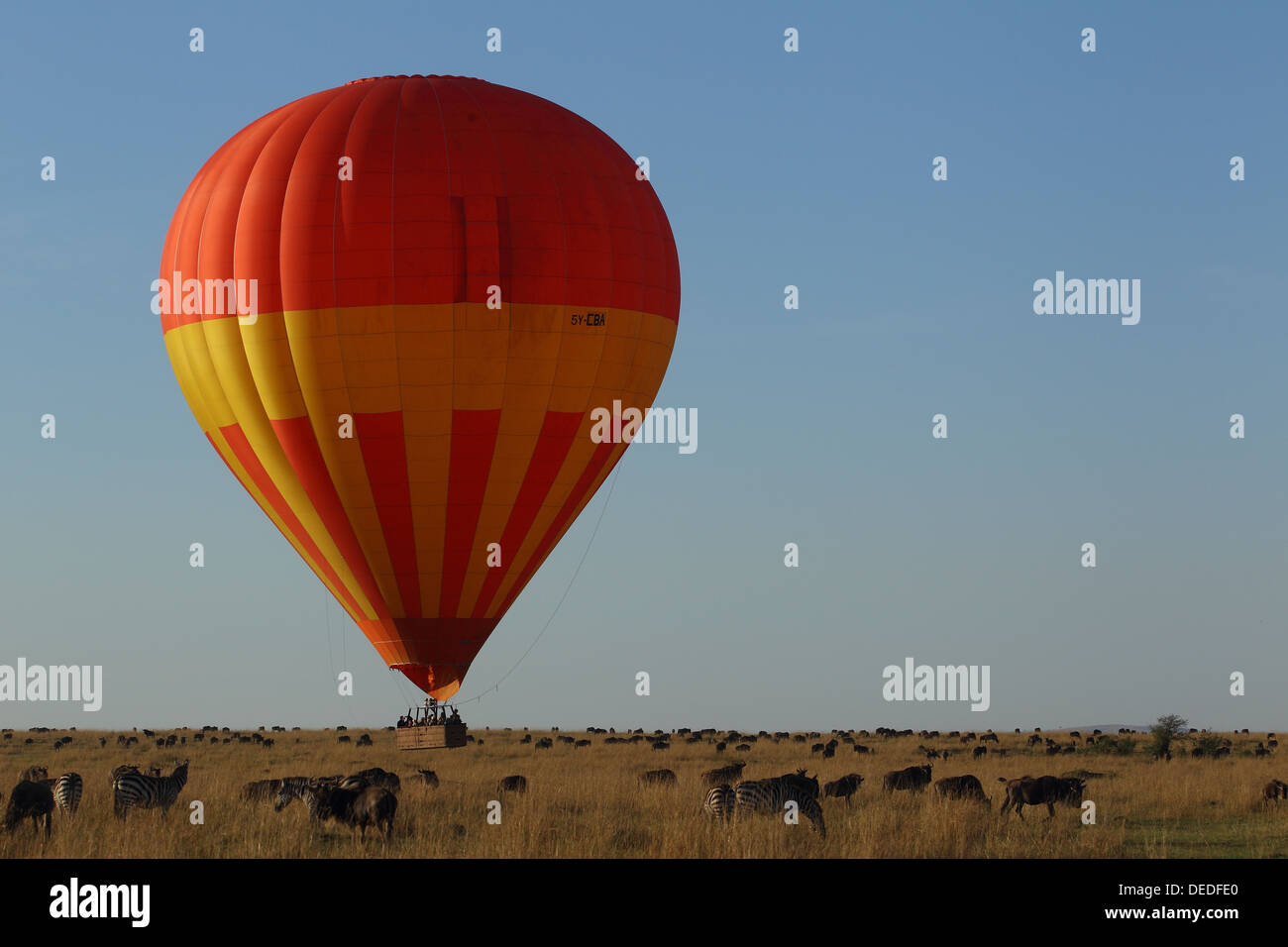 Hot Air Balloon Safari in Masai Mara, Kenya, Africa Stock Photo