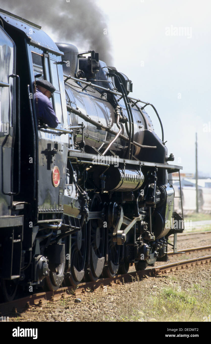 Steam loco 1271 on excursion. New Zealand - Stock Image