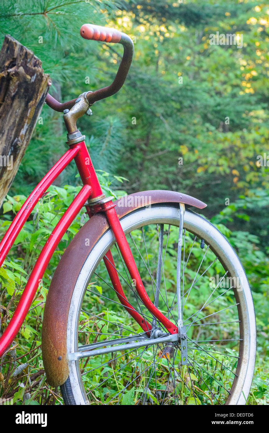 Red bicycle with whitewall tires against forest background. - Stock Image