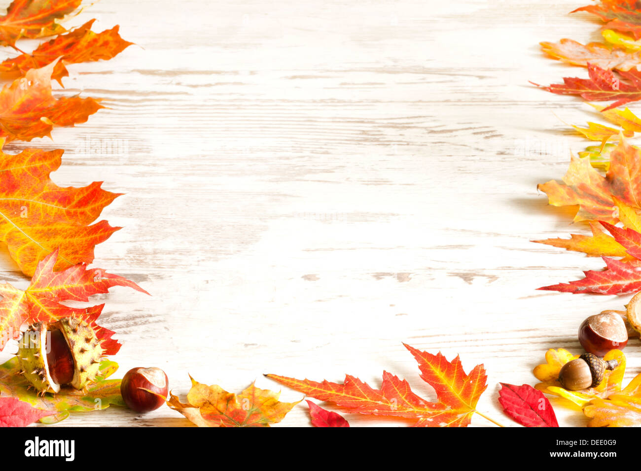 Autumn leaves on white boards background border - Stock Image
