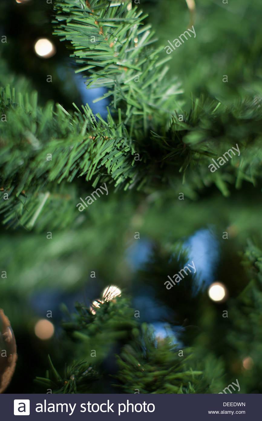 Defocused Christmas tree - Stock Image