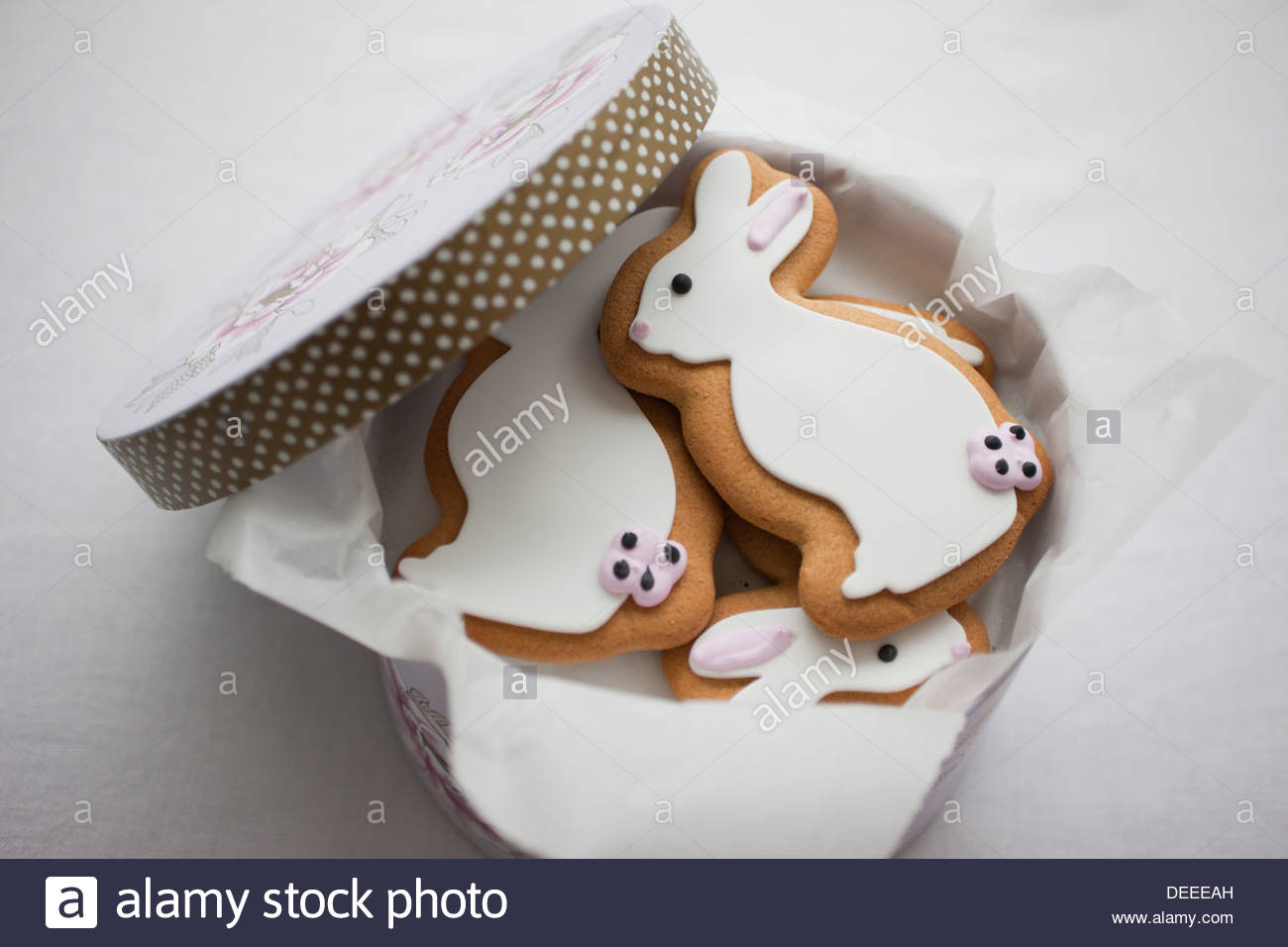 Easter Bunny cookies in round box - Stock Image