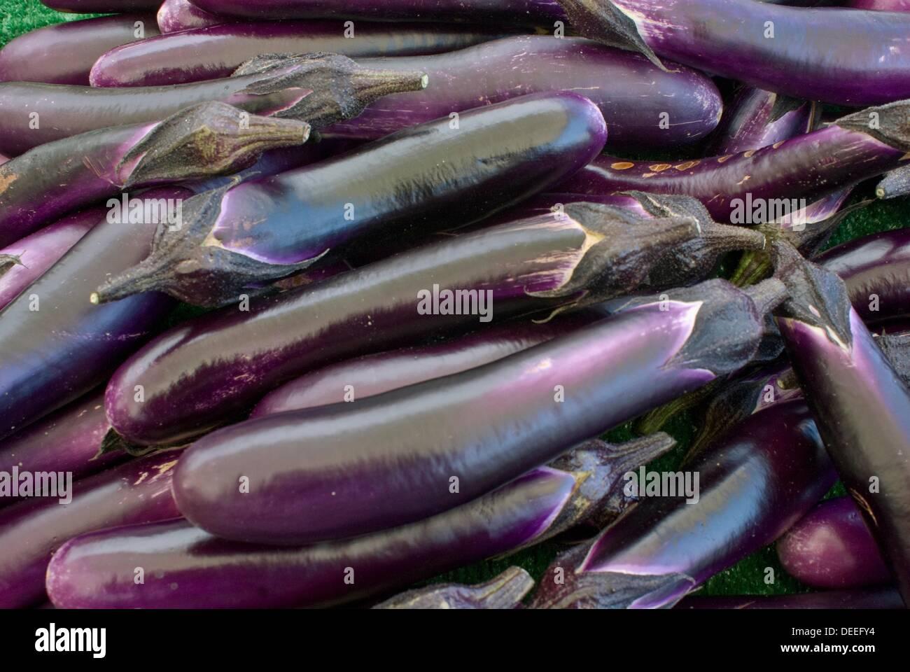 Organic eggplants at farmers market in upscale California city near San Francisco - Stock Image