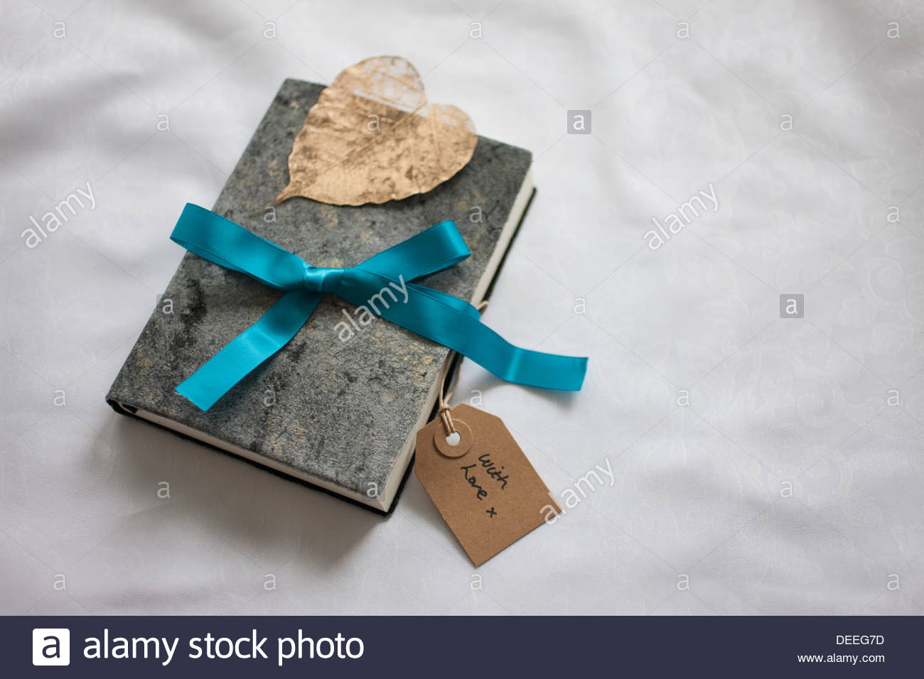 Close up of book tied with ribbon and gift tag - Stock Image