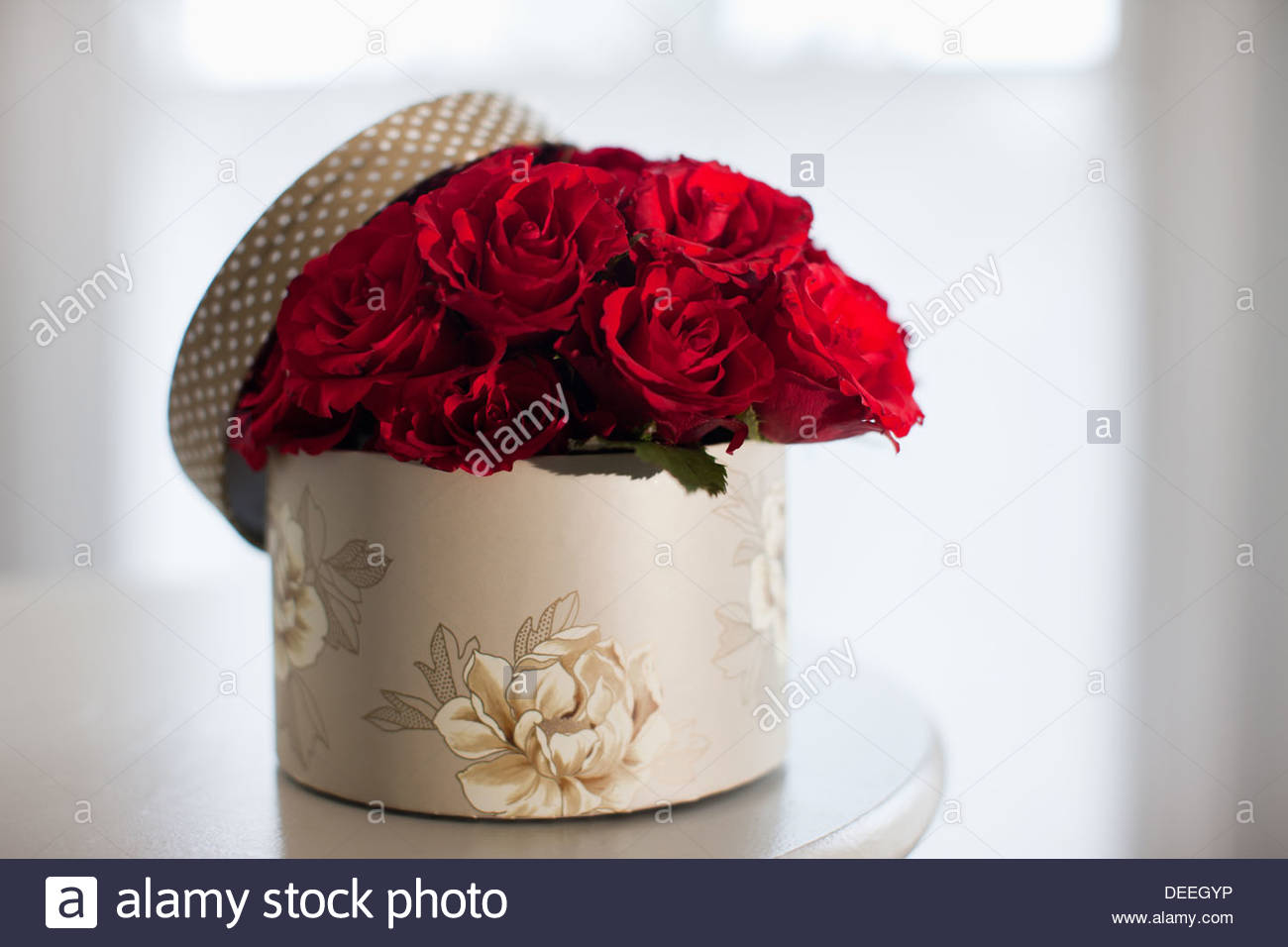 Red Rose Bouquet In Gift Box Stock Photo 60556938 Alamy