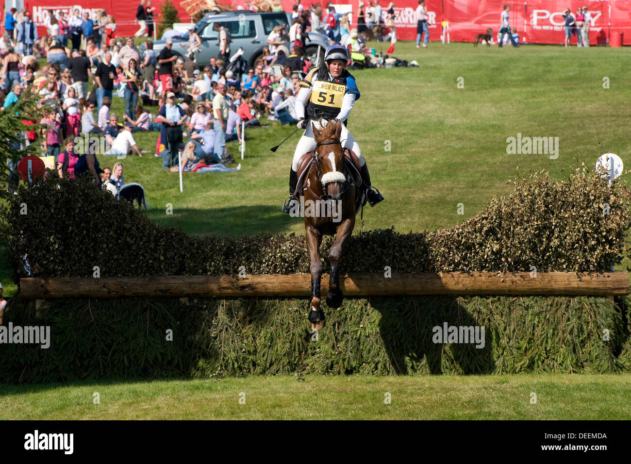 horse and rider at the blenheim horse trials - Stock Image