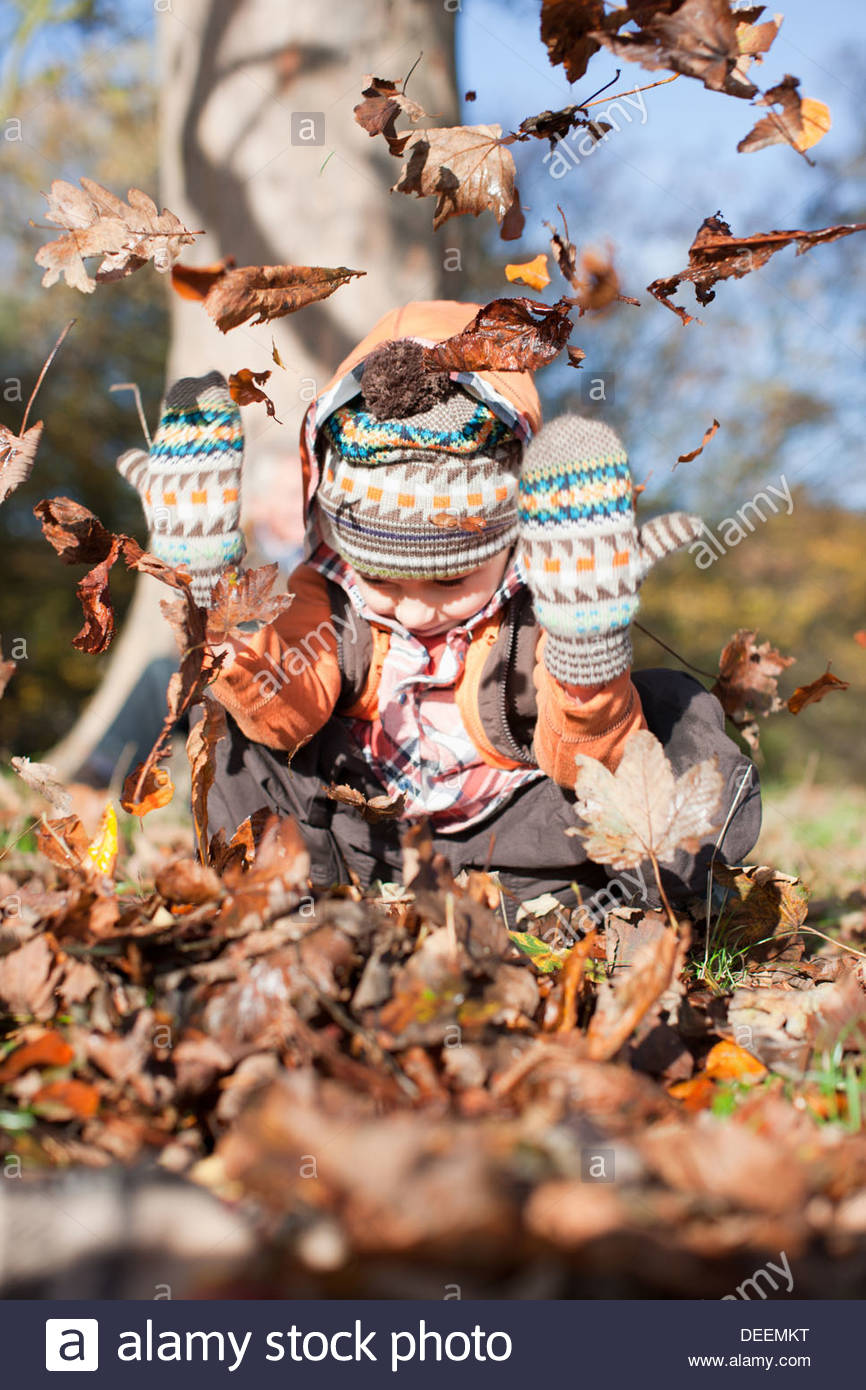 Boy playing in pile of autumn leaves - Stock Image