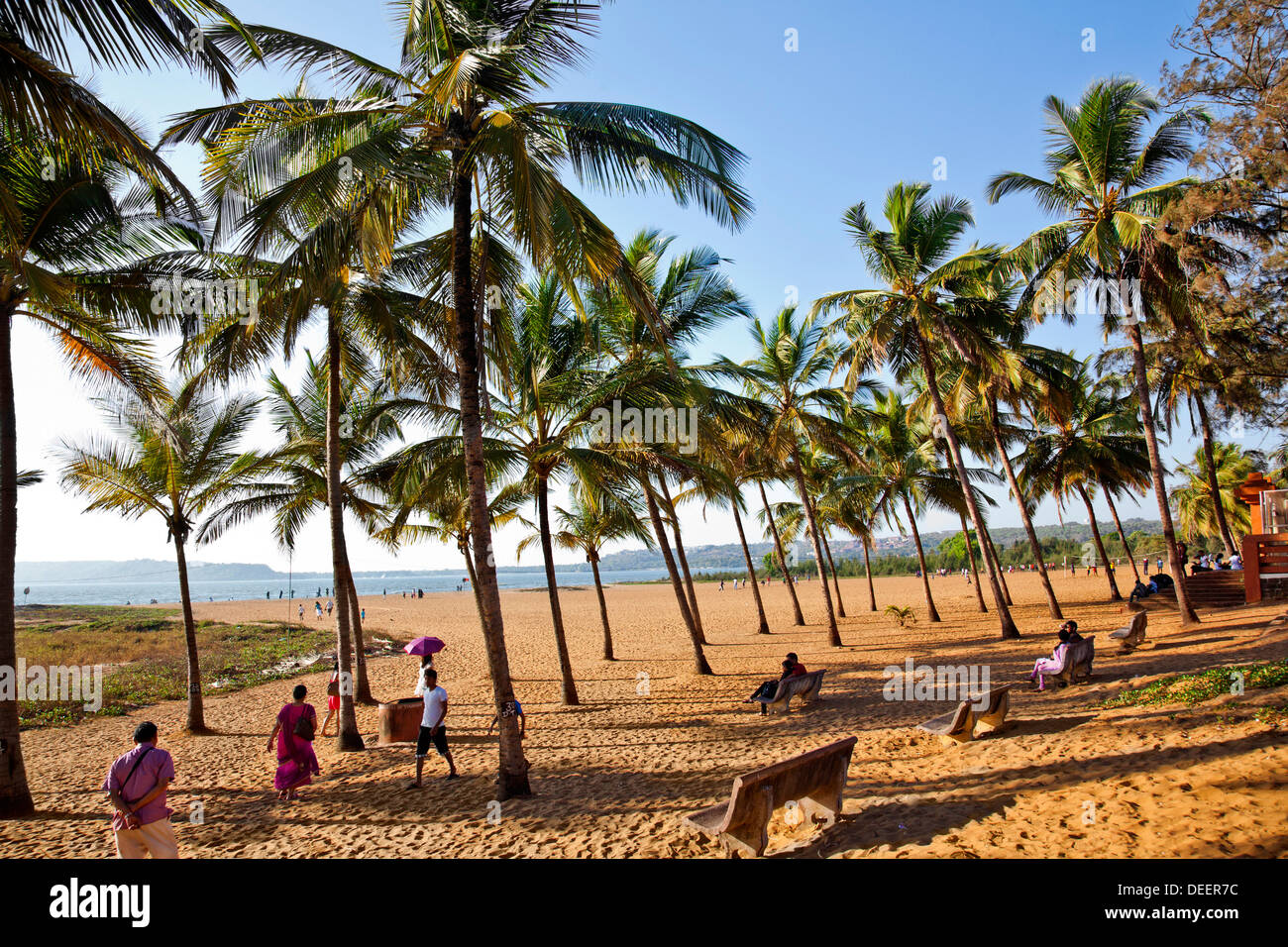 Tourists on the beach miramar beach panaji north goa for The miramar