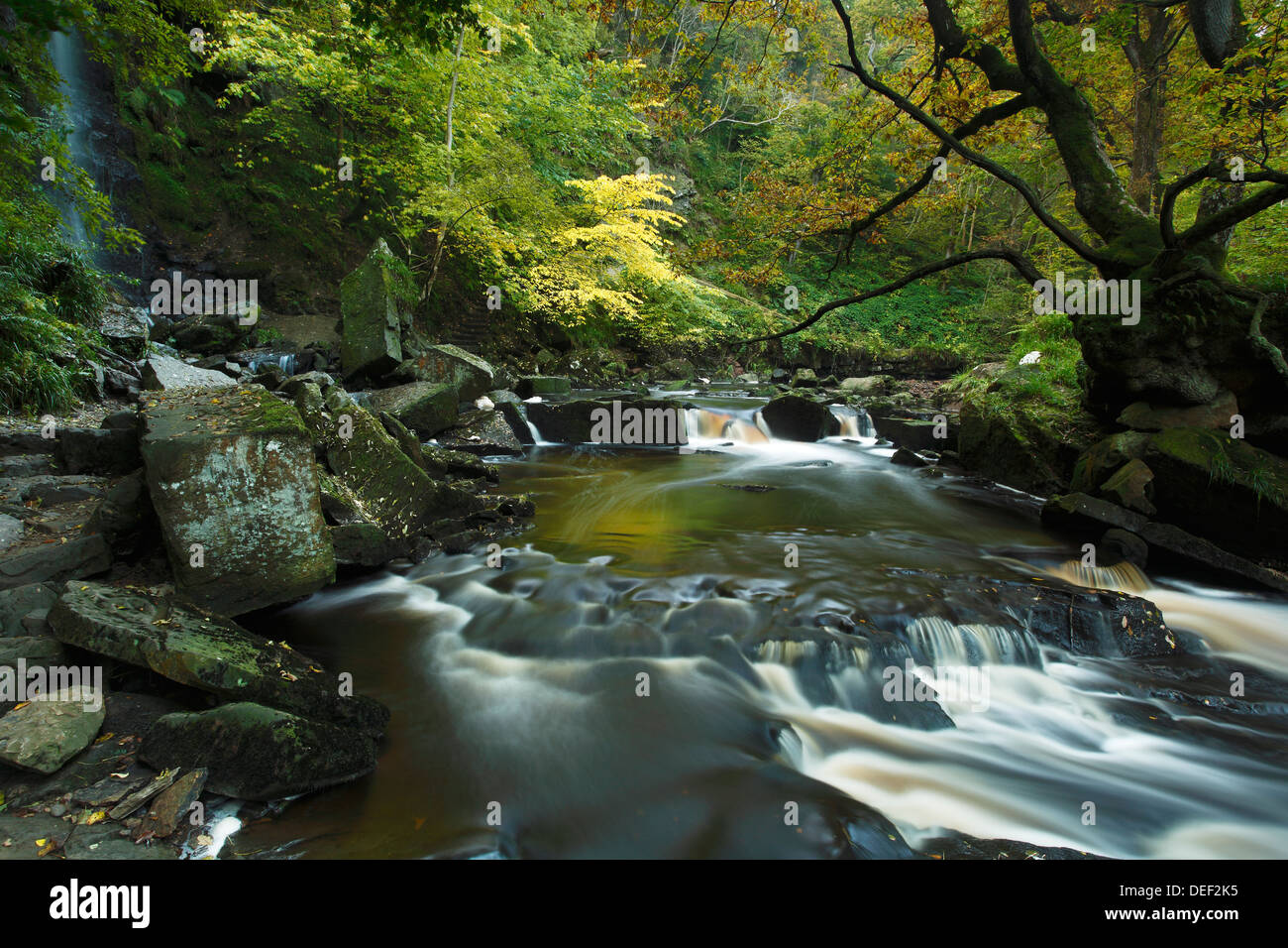 Mallyan Spout Waterfall and West Beck Goathland, North York Moors.  Autumn 2012 - Stock Image