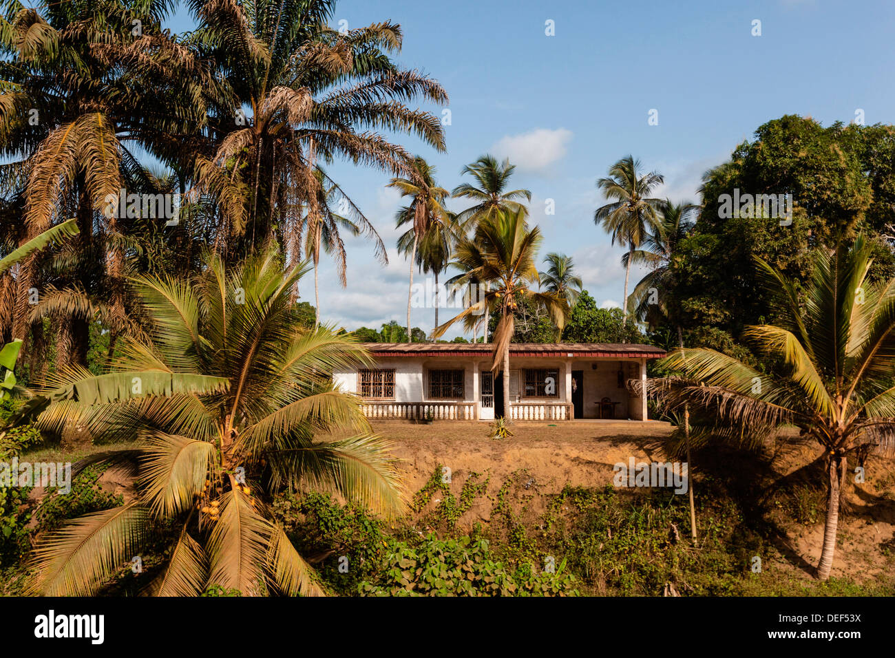 Africa, Cameroon, Kribi. Structure between palms. - Stock Image