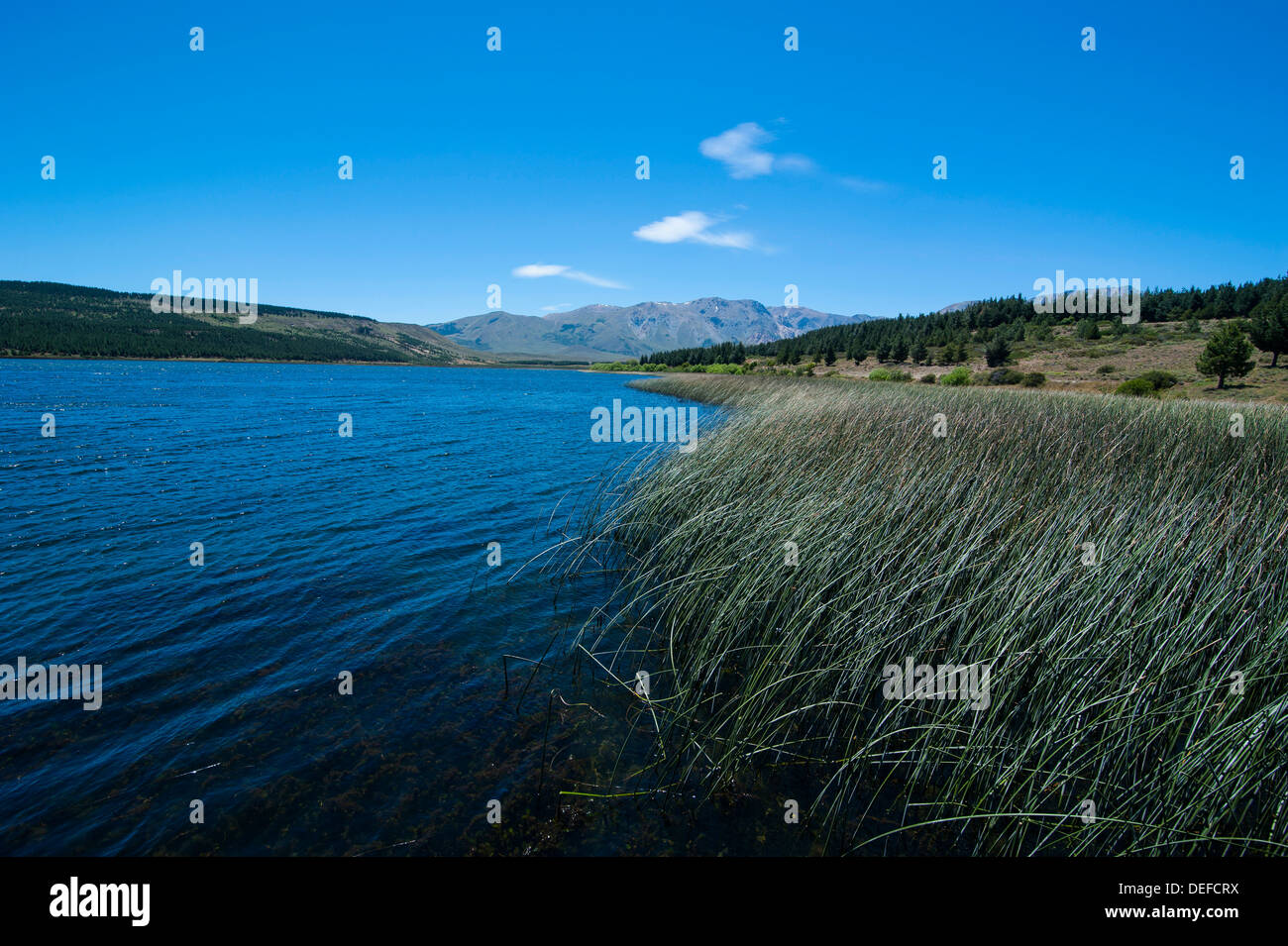 Lake above Esquel, Chubut, Patagonia, Argentina, South America - Stock Image