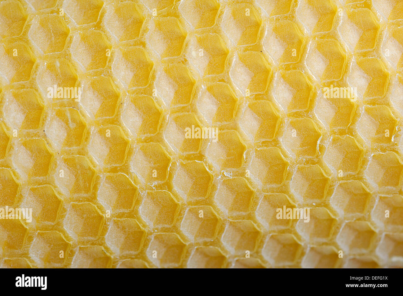 Candle made of beeswax, detail, Germany - Stock Image