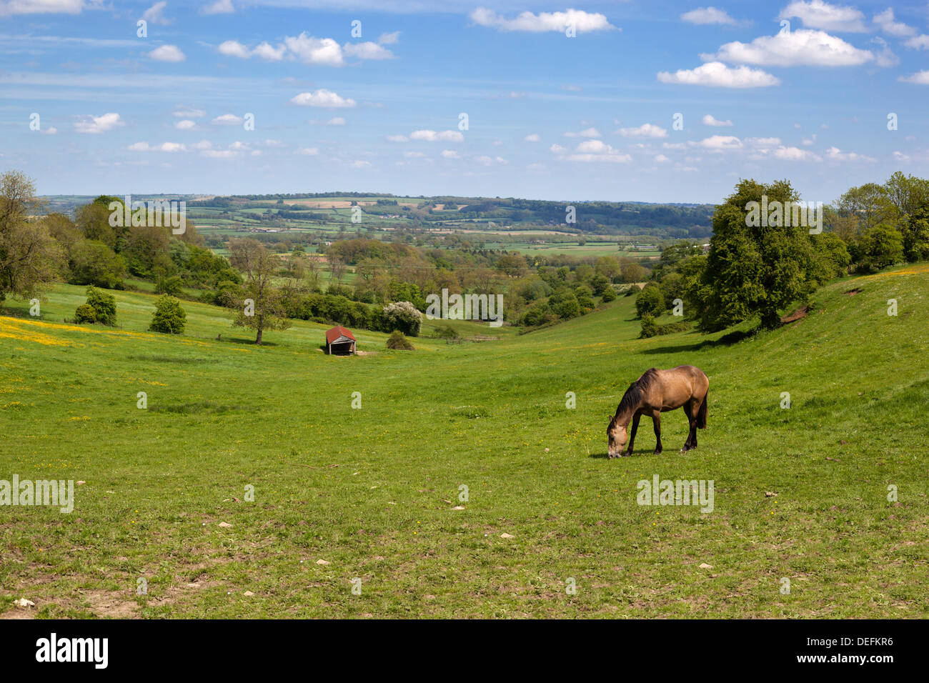 Cotswold landscape, Stow-on-the-Wold, Gloucestershire, England, United Kingdom, Europe Stock Photo
