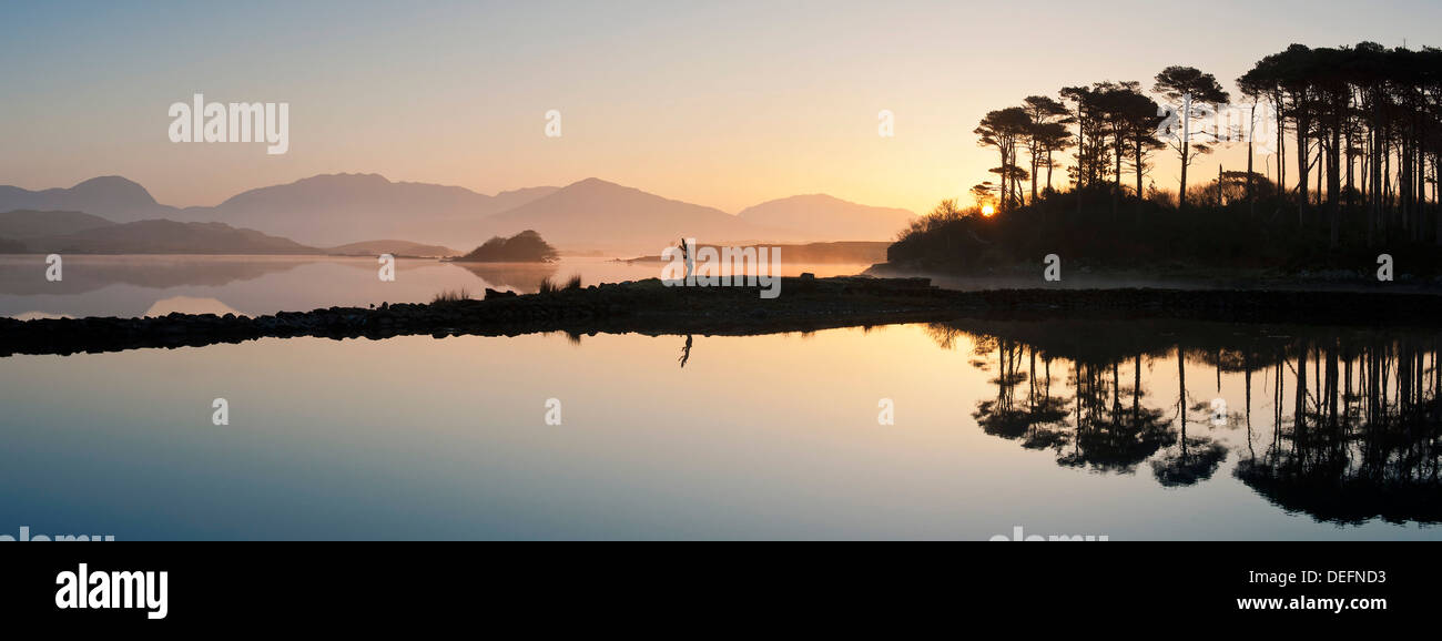 Derryclare Lough at dawn, Connemara, County Galway, Connacht, Republic of Ireland, Europe - Stock Image